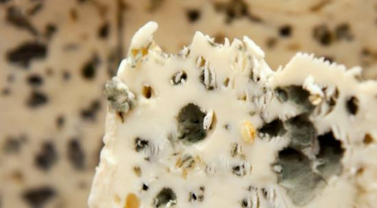 news events gossip jokes the most expensive cheese in the world